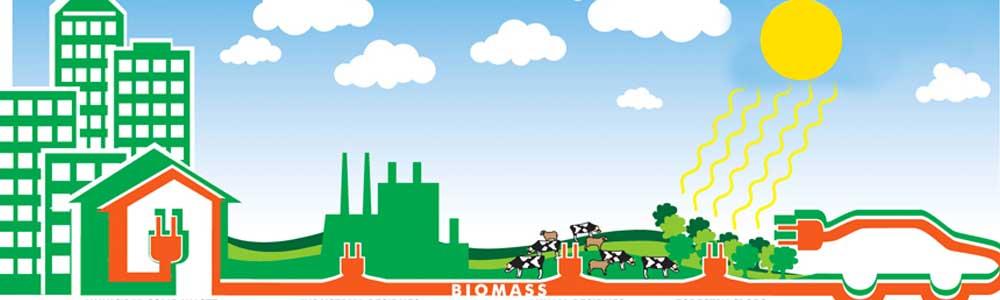 Biomass-2