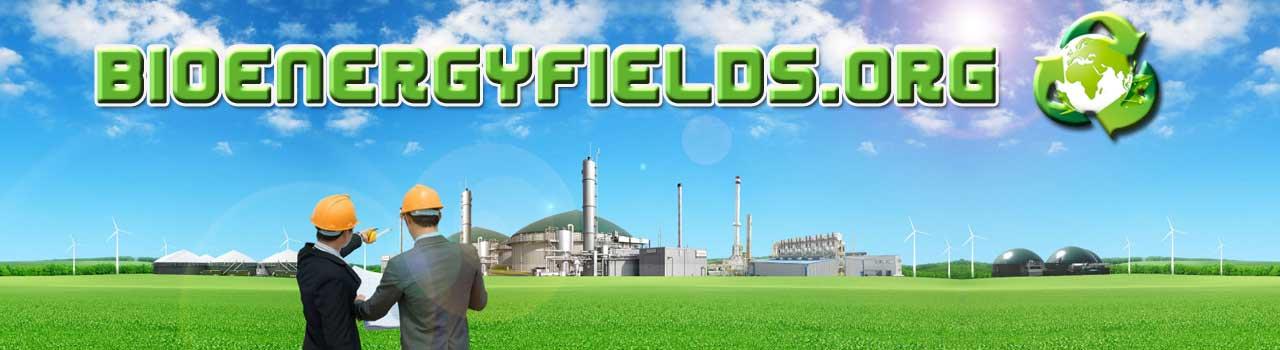 bioenergyfields