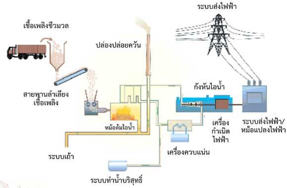 Biomass-technology