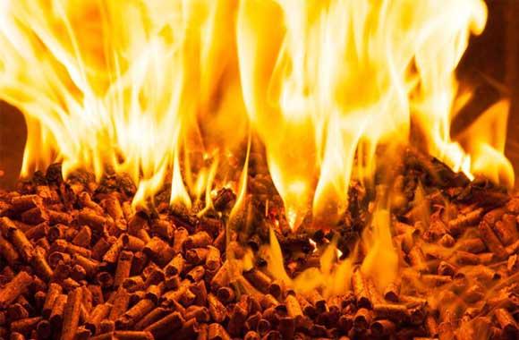 Biomass.fire