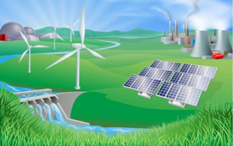 การสร้างพลังงานทางชีวภาพ มีวิธีอะไรบ้าง